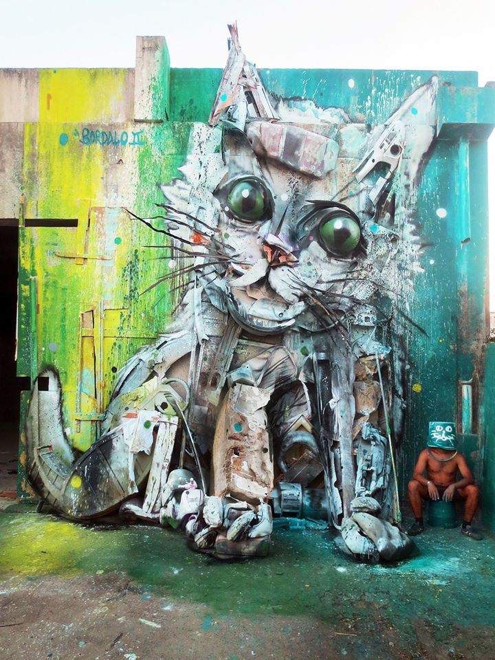 bordalo cat