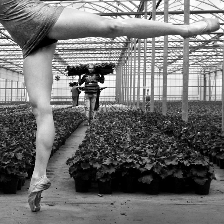 Green Attitude Ph © Raoul Iacometti